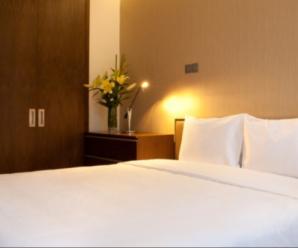 Top 5 căn hộ dịch vụ giá rẻ khu vực Lê Thánh Tôn quận 1